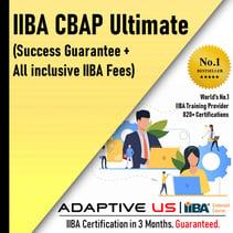 CBAP ultimate plan-2021