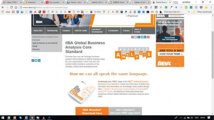 Business Analysis Global Standard