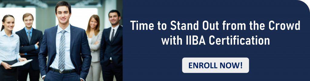 IIBA Certification