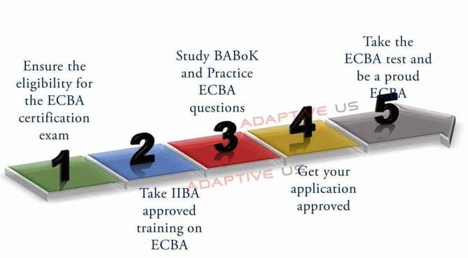 Steps to become a successful ECBA
